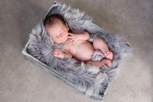 Newborn slaapt in kist onder grijze deken.