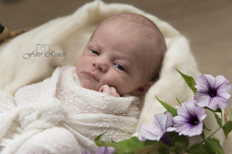 Baby in wit deken met bloem