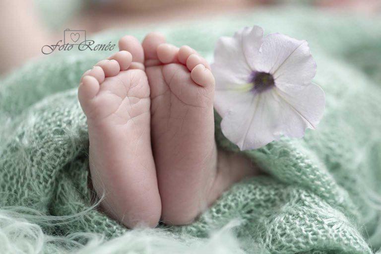 Newborn voetjes met bloem